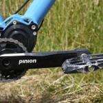 Portus Cycles - Enduro - André - PInion