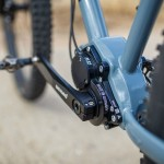 Portus Cycles - Tannenwald - Pinion