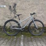 Portus Cycles pinion - Seite1